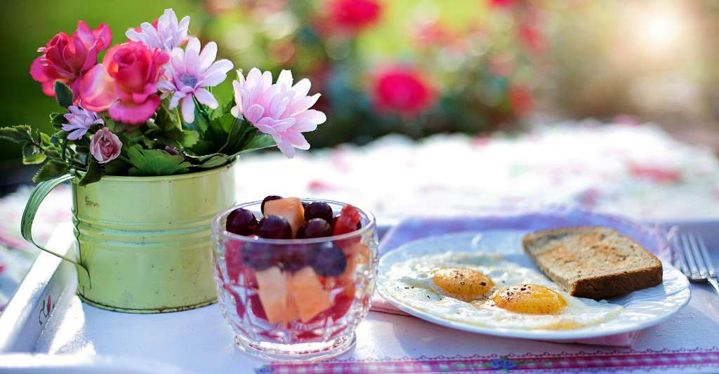Petit déjeuner anti-cholestérol. © Jill111, Domaine public