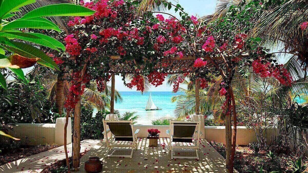 Les éclats de couleur proviennent des jardins tropicaux matures, où les cocotiers se mélangent aux bougainvilliers