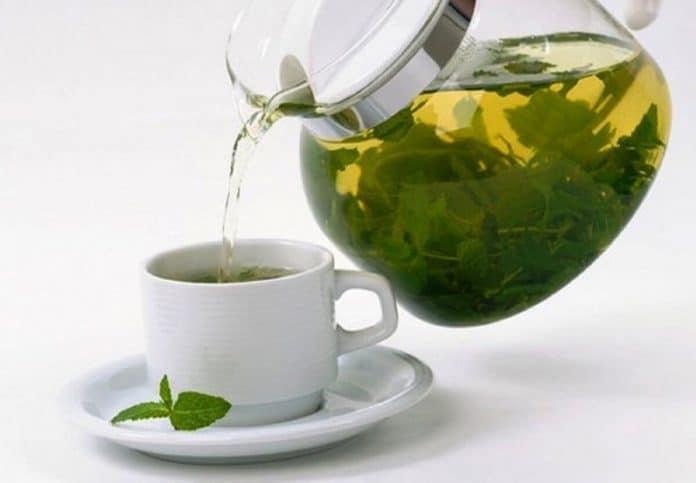 Qu'est ce que le thé Moringa